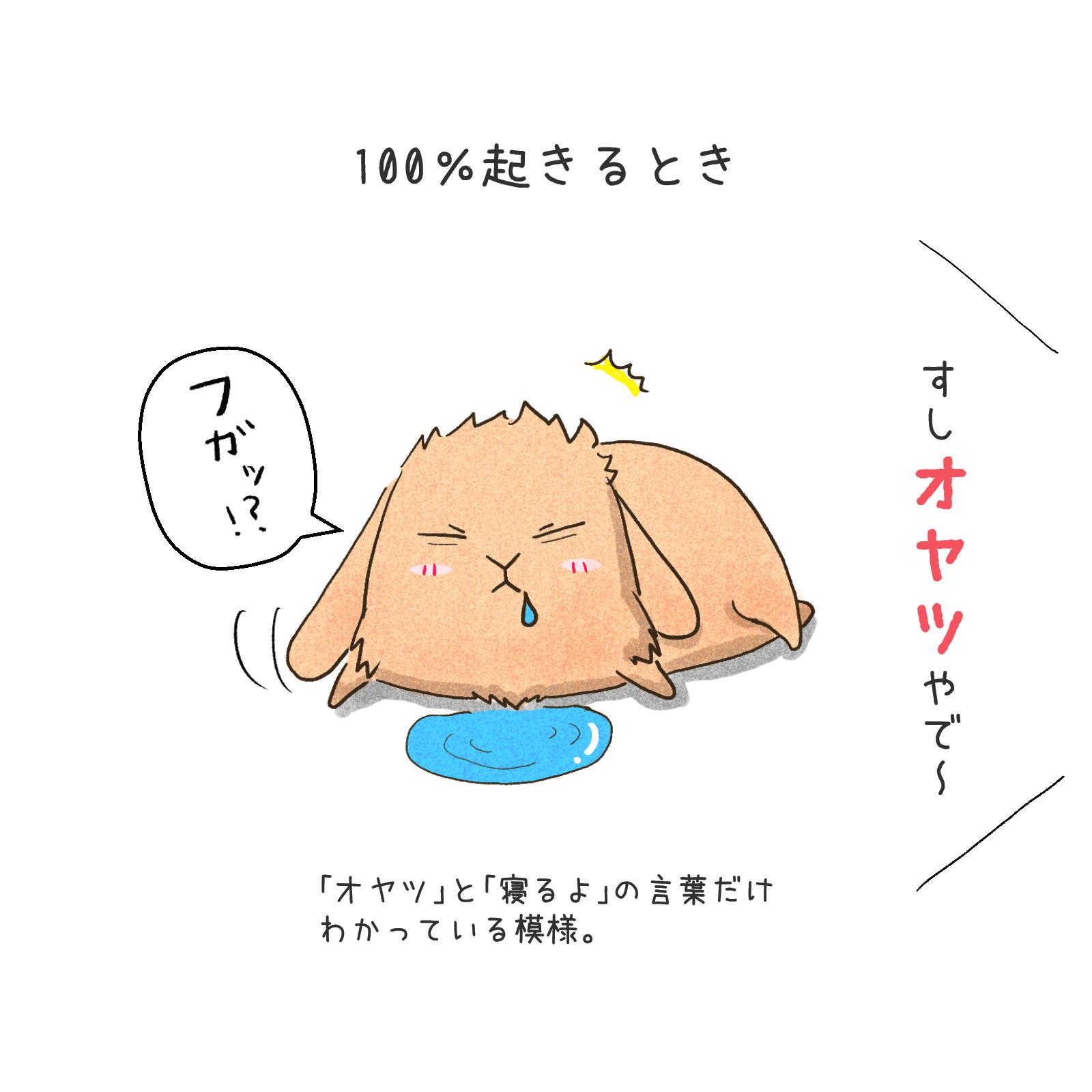うさぎの漫画05